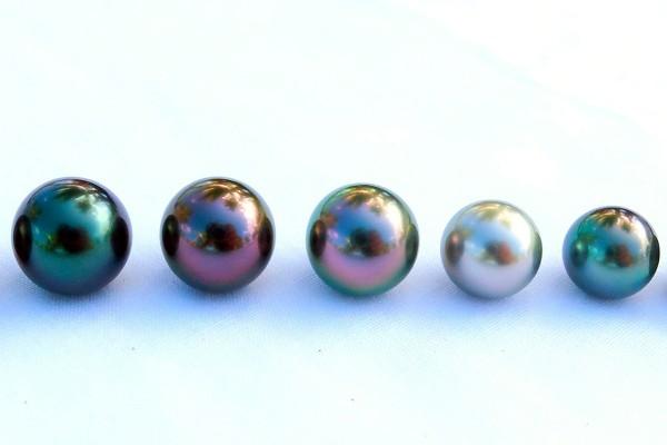 black-pearl-variation-600x400