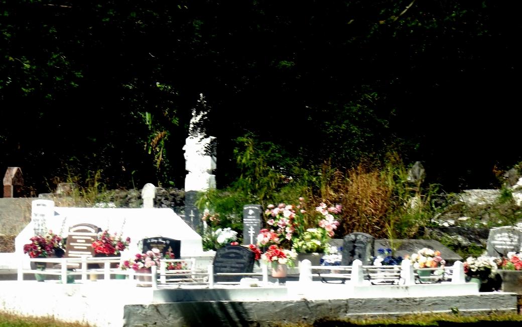 burial plot in front yard.JPG