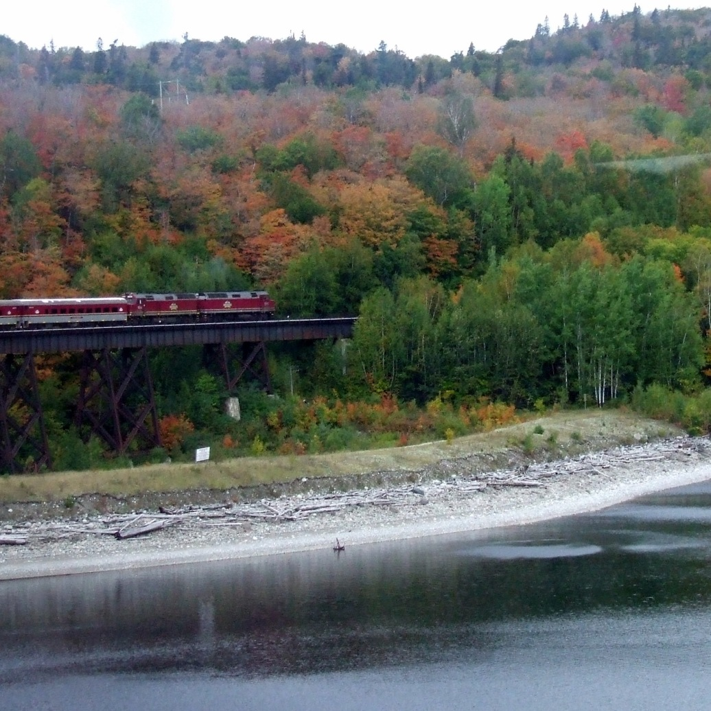 Train on lake